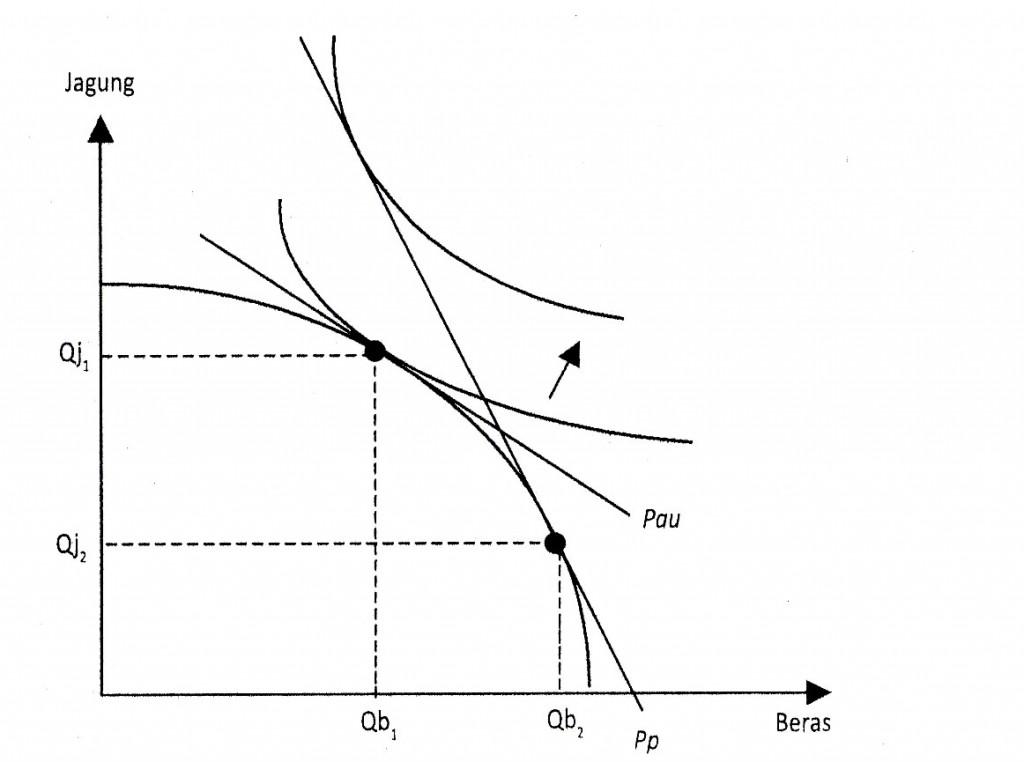 Gambar 6.15 Fungsi Produksi Dalam Pandangan Ekonomi Mikro Islami