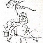 Cerita Rakyat Papua Barat Legenda Asal Usul Burung Cendrawasih