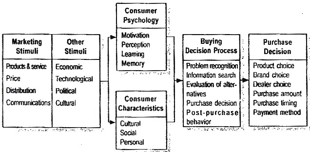 model-of-buyer-behavior-by-phillip-kotler